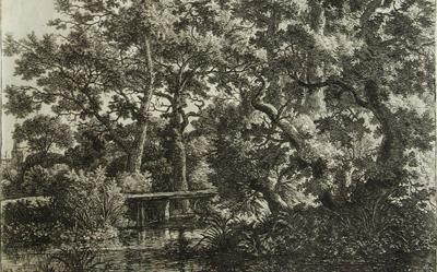 Antonie Waterloo – Woodland Scene