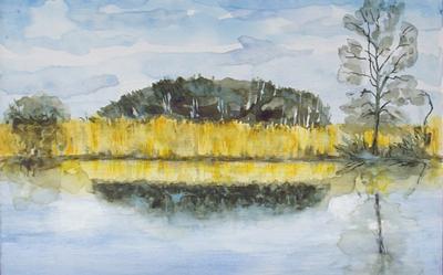 Penny Robinson – Winter on Shapwick Heath