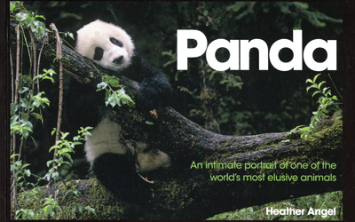 Heather Angel – Panda
