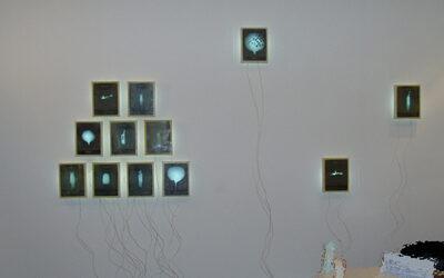 Mark Karasick – Traces (part installation 2)