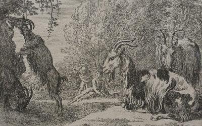 Herman van Swanevelt – Angora Goats
