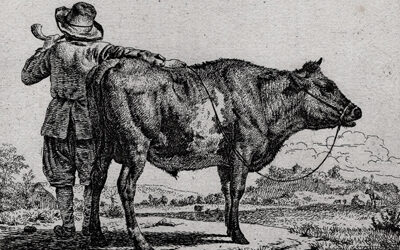 Adriaen van de Velde II – Herdsman with Bull and Horn